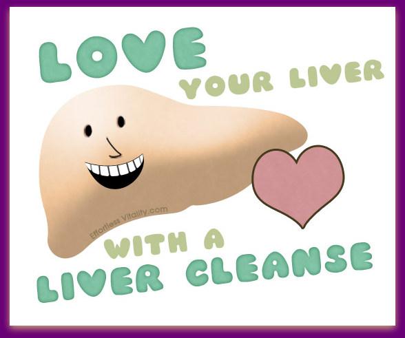 Risultati immagini per happy liver
